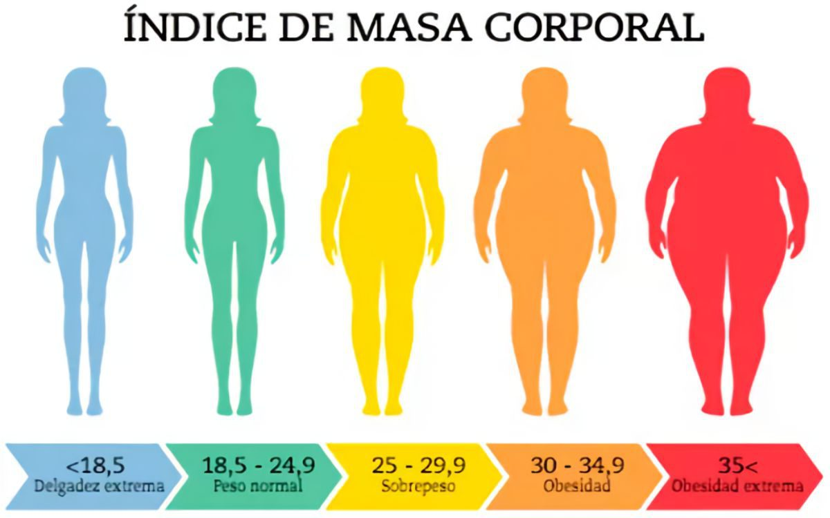 body mass index ispanyolca